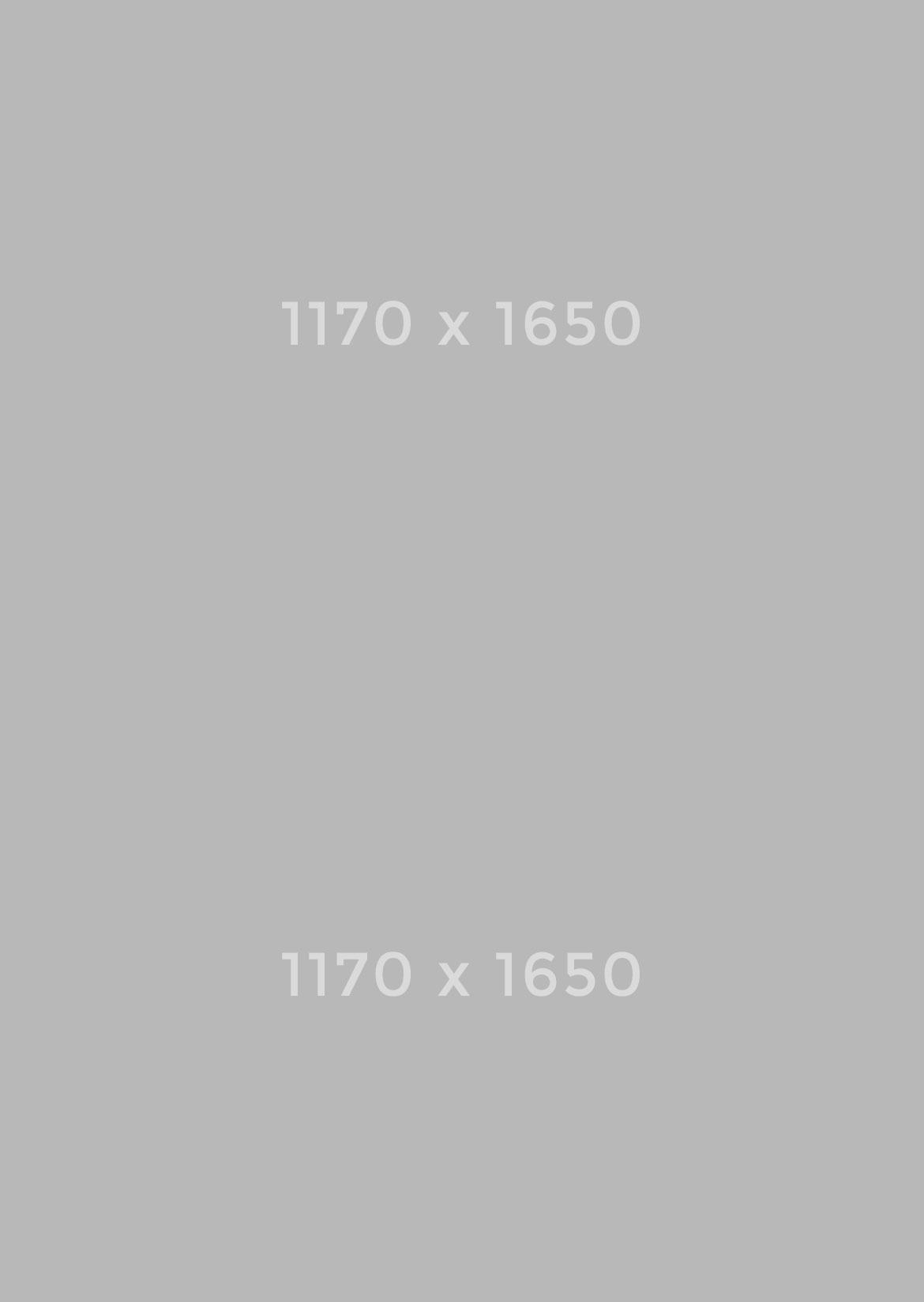 1170x1650